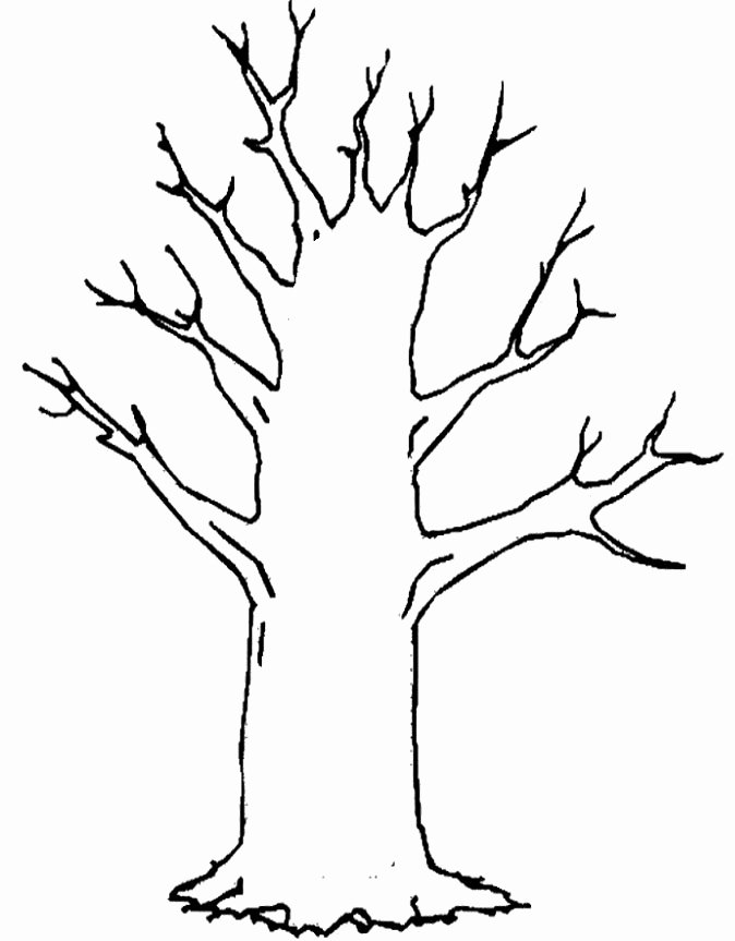 Tree Trunk Template New Tree Trunk Coloring Page Coloring Pages