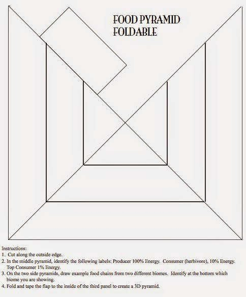 Triangle Foldable Template Inspirational Ecological Pyramids Worksheet