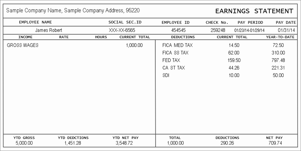 Truck Driver Pay Stub Template Fresh Pay Stub Generator