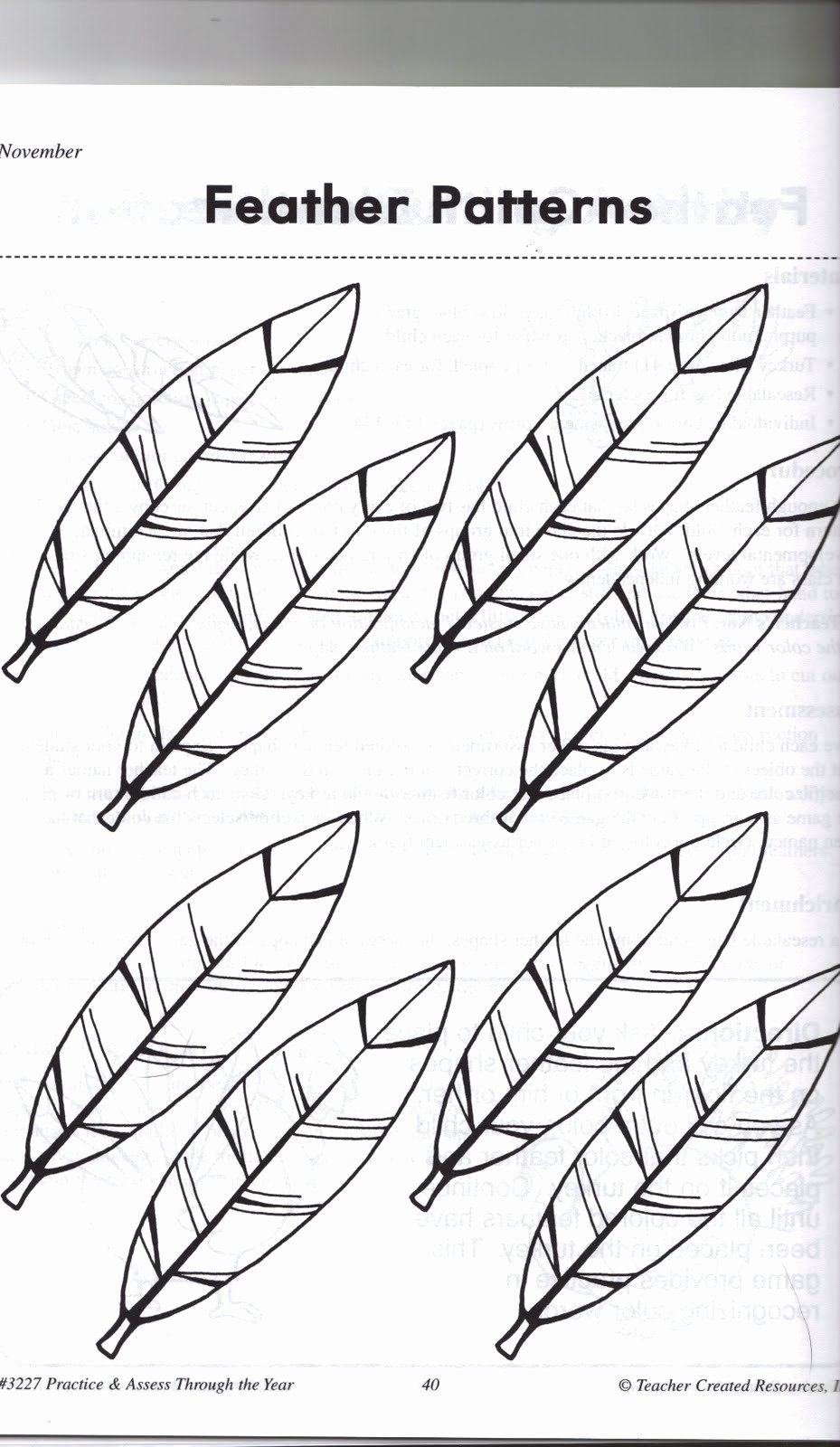 Turkey Feather Template Pattern Printable Inspirational 4 Best Of Feather Pattern Printable Free