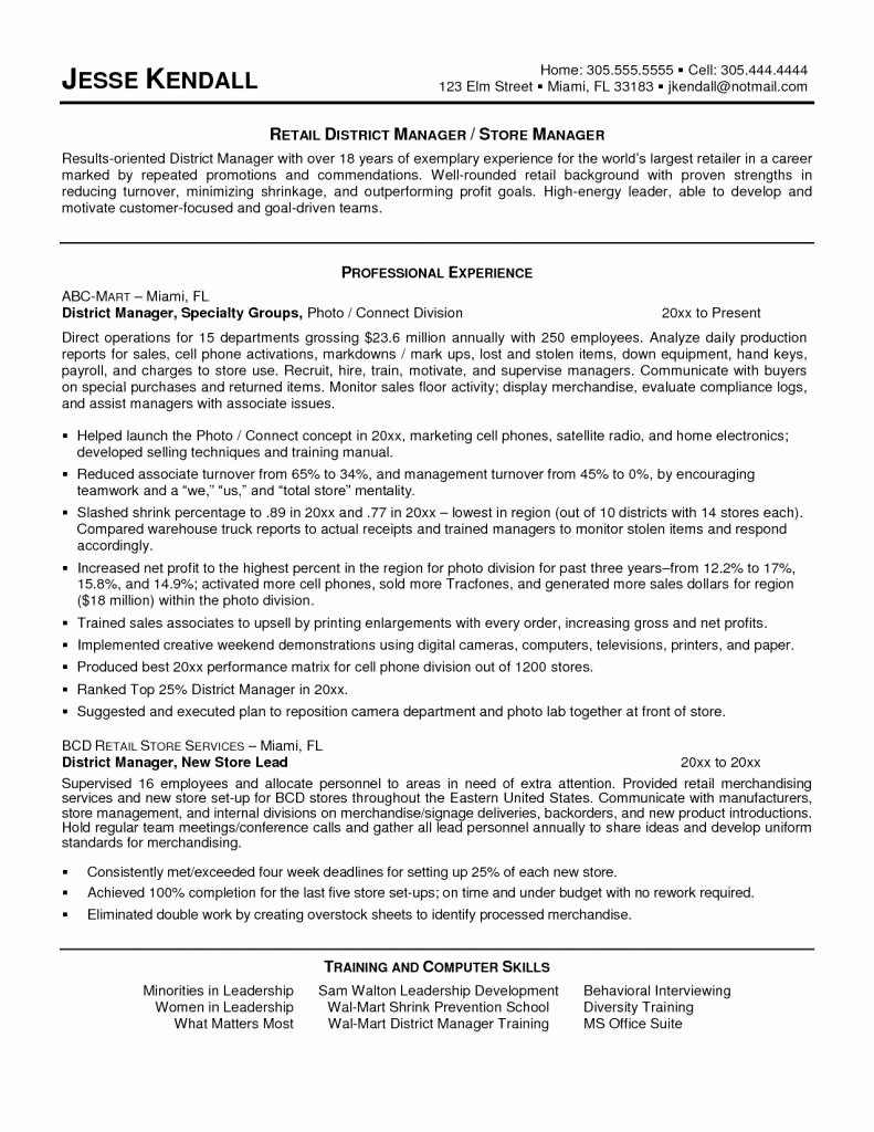 Us-style Resume New Us Resume Template Unique American Style Resume Us Resume