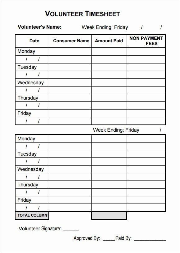 Volunteer Hour Log Template Elegant Sample Volunteer Timesheet 10 Example format