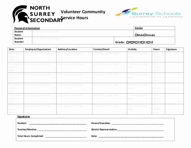 Volunteer Hours Log Template Awesome Volunteer Munity Hours Log Sheet