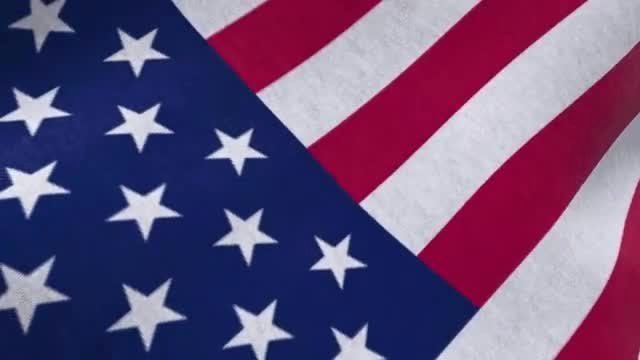 Waving Flag after Effects Unique Waving Flags Maker after Effects Templates