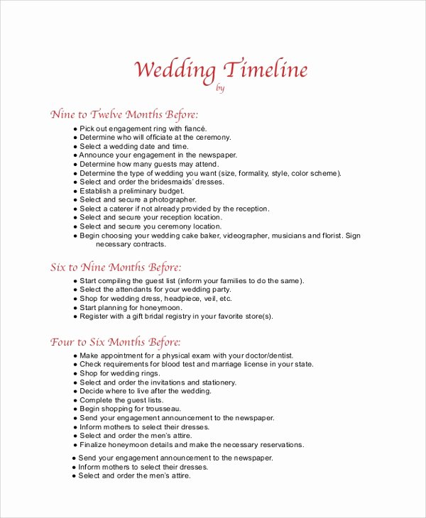 Wedding Day Timeline Template Free Unique 8 Wedding Timeline Samples