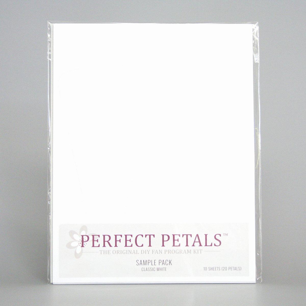 Wedding Fan Program Kit Unique Cherish Paperie Wedding Programs Envelopments Wedding