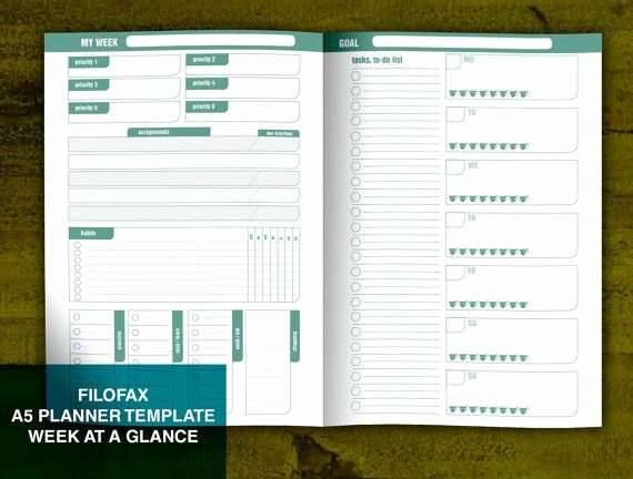 Week at A Glance Templates Elegant 17 Best Images About Planner On Pinterest