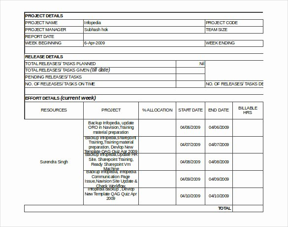 Weekly Project Status Report Template Excel Fresh 19 Status Report Templates Free Sample Example