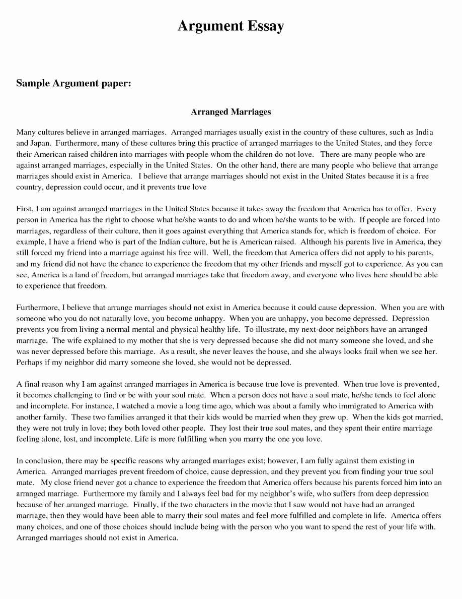 Well Written Essays Examples Awesome 18 Debate Report Writing Examples Pdf