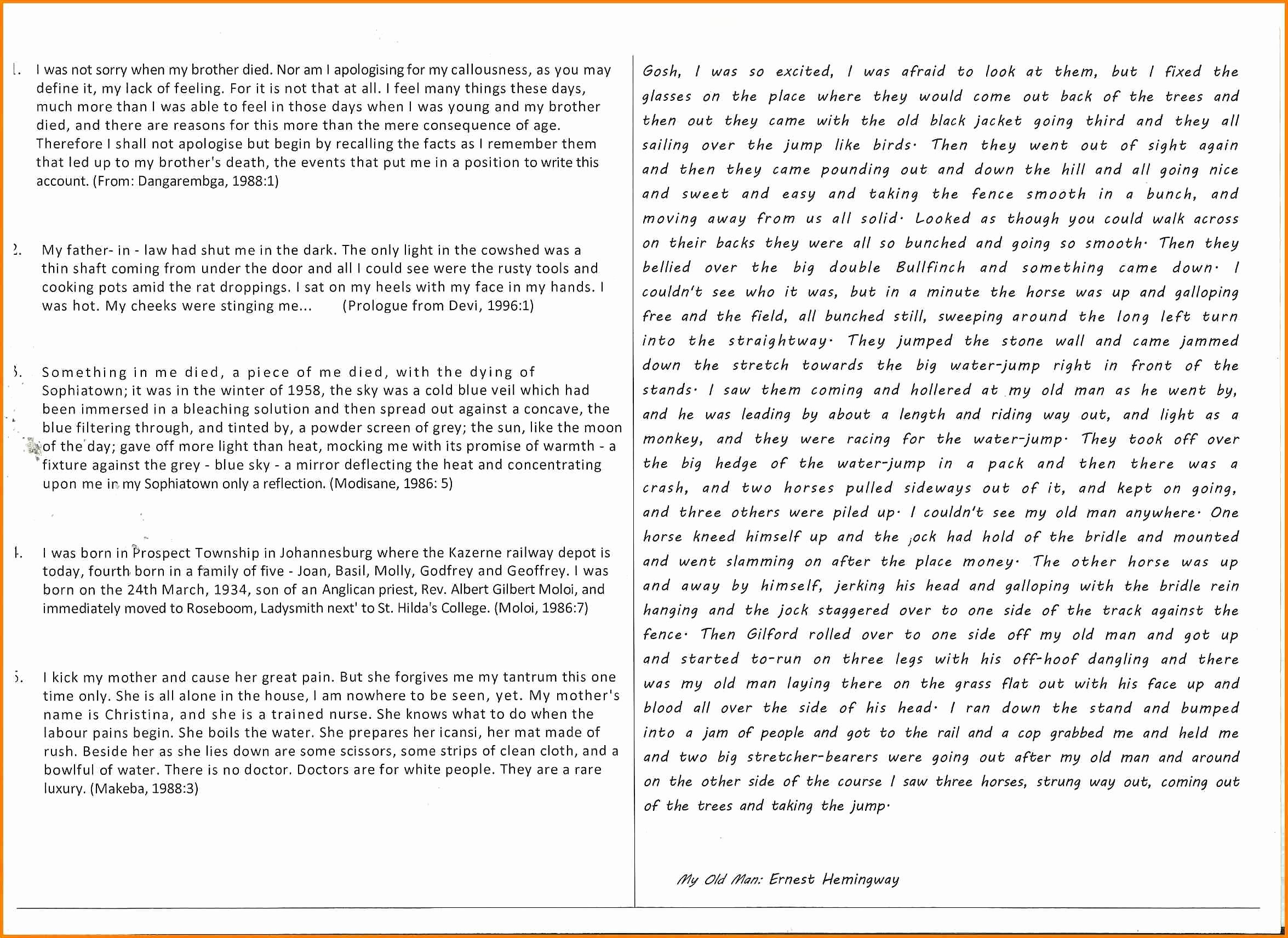 Well Written Essays Examples New 5 Example Of A Well Written Essay