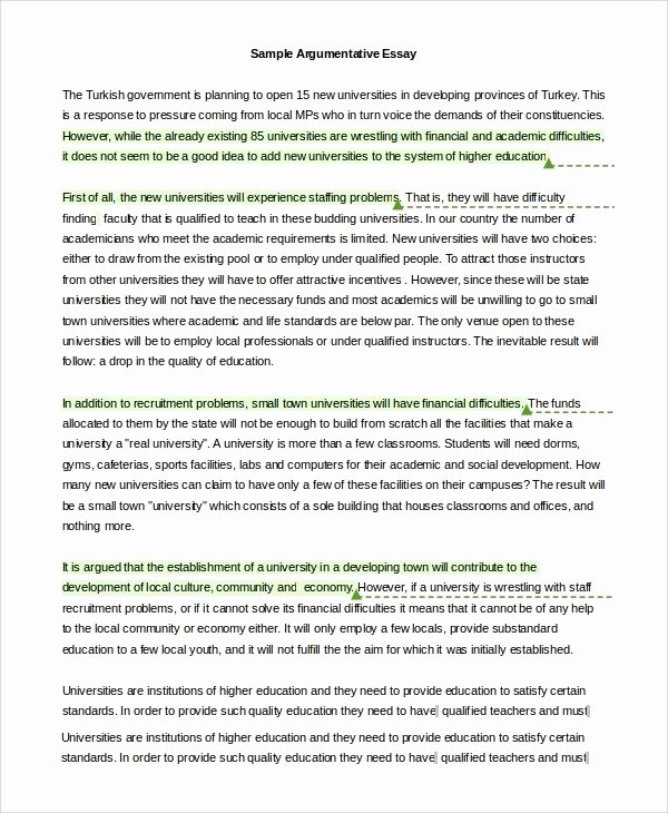 Well Written Essays Examples Unique Good Example Argumentative Essays