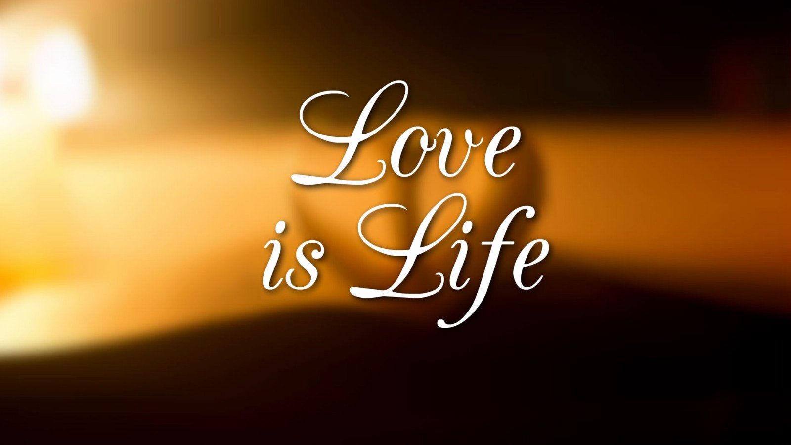 What is Love Pictures Lovely Love is Life and if You Miss Love You Miss Life – Weneedfun