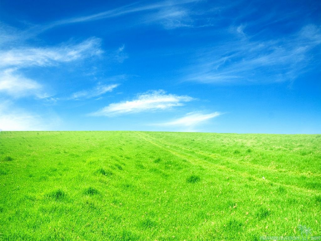 What is the Definition Of Impressive Unique Grassland Wallpapers Wallpapersafari