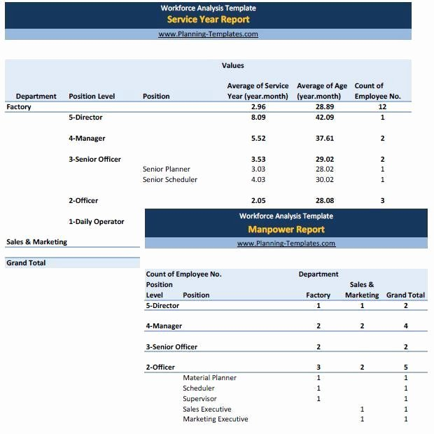 Workforce Planning Template Excel Luxury Workforce Analysis Report In Excel Spreadsheet Manpower
